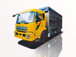 Xe Tải Dongfeng 7T5 B190 Chở Gia Súc